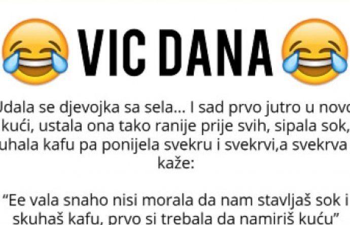 VIC DANA: Svekrva i snaha